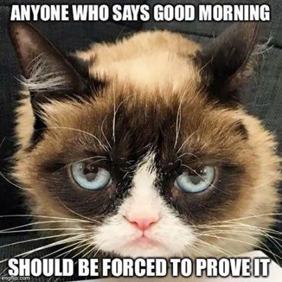 Good Morning Meme Funny