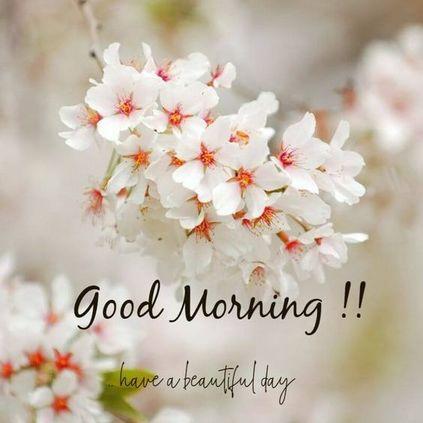 35 Amazing Good Morning