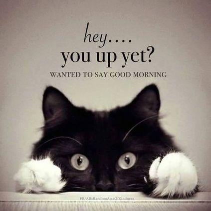 Aaj Ka Good Morning Wallpaper Download