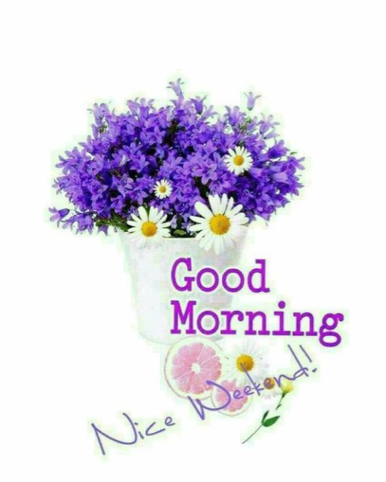 Good Morning Hug Wallpapers for WhatsApp and facebook for example