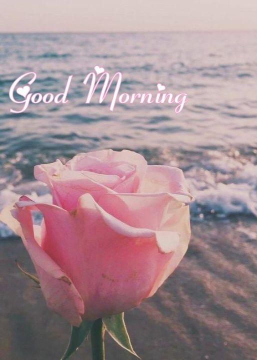 Good Morning Love pictures for Lover partner
