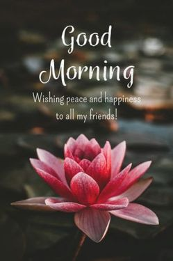 Top 134+ Good Morning Wishes