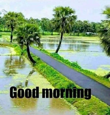 good Morning My cute love