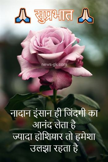 Good Morning Images With Nature Quotes In Hindi